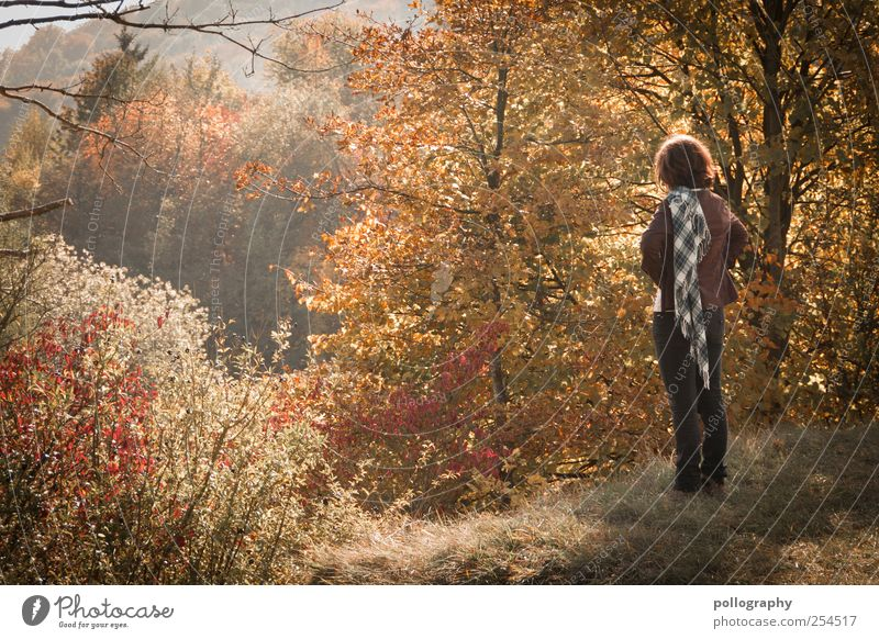 autumn day Human being Woman Adults Life 1 Nature Beautiful weather Plant Tree Grass Bushes Hill Jeans Scarf Brunette Longing Wanderlust Colour Dream Autumnal