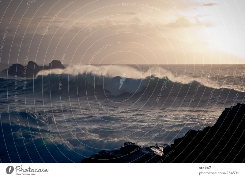 Sky Ocean Landscape Coast Waves Wild Surf White crest