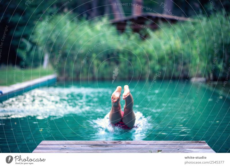 cooling down Woman Adults Swimming & Bathing Nature Swimming pool natural pool natural pools Common Reed Jump jump in the water Bathtub Headfirst dive