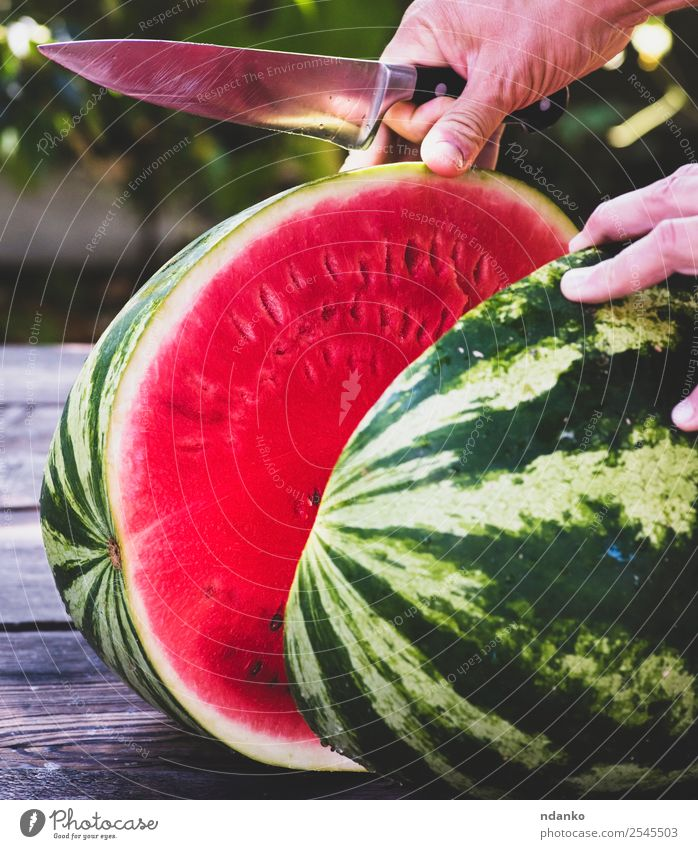 ripe large watermelon Fruit Dessert Nutrition Vegetarian diet Diet Knives Summer Hand Nature Eating Fresh Delicious Natural Juicy Green Red Colour Water melon