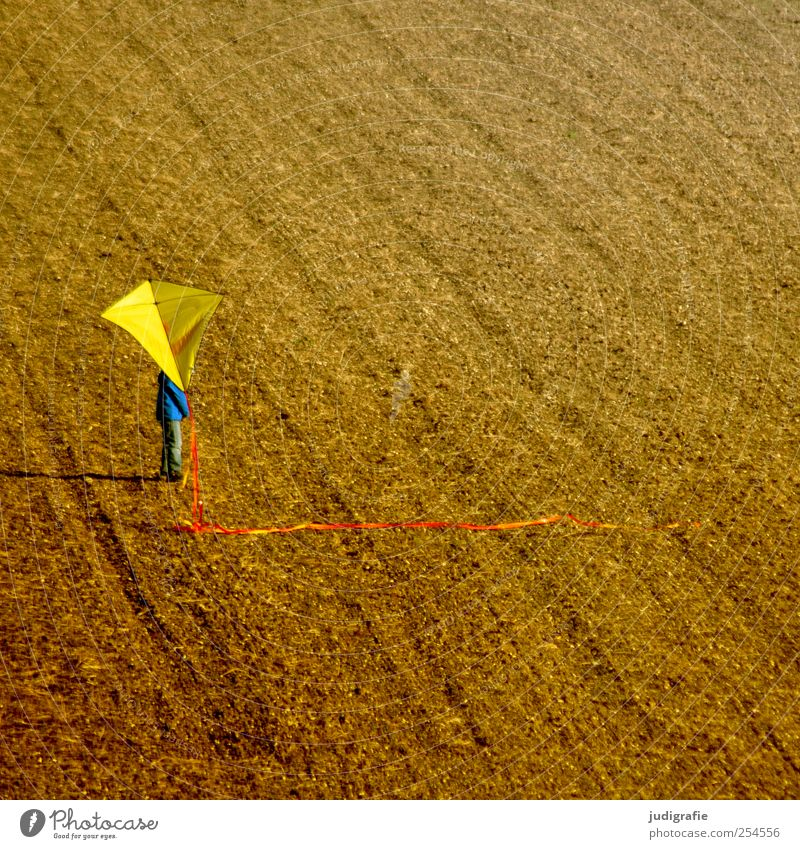 autumn Leisure and hobbies Playing Human being Child 1 Autumn Toys Stand Yellow Kite Field Earth Colour photo Multicoloured Exterior shot Day