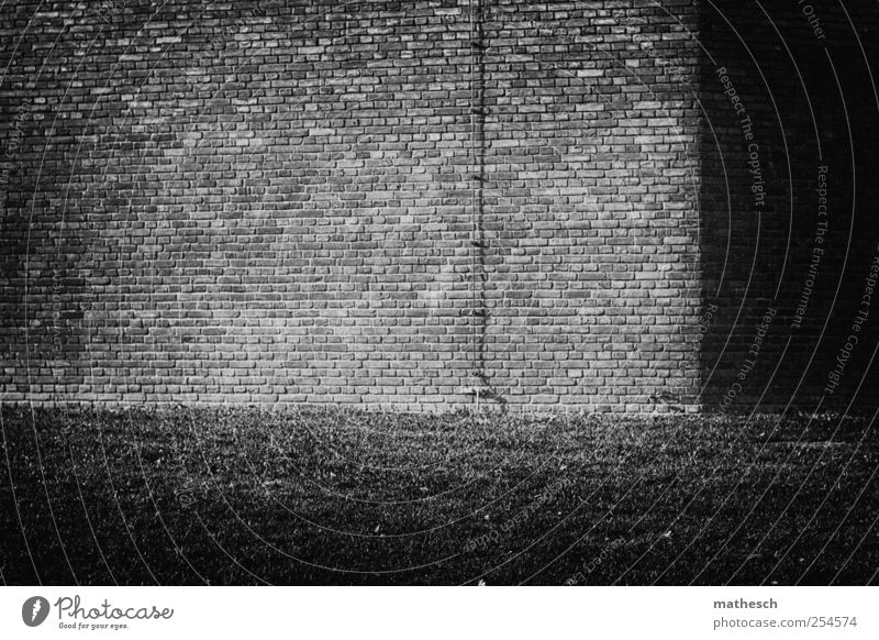 homecoming Deserted House (Residential Structure) Building Wall (barrier) Wall (building) Lightning rod Old Black White Living or residing Grass Grass meadow