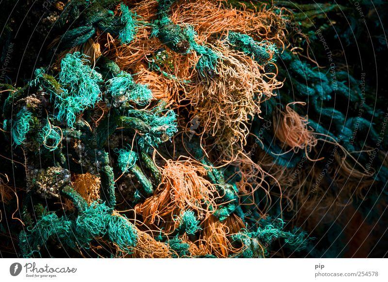 Green Orange Wet Rope String Turquoise Trashy Chaos Muddled Doomed Knot Fisherman Decompose Disheveled