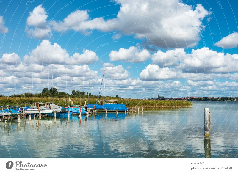 Boats at Unterucksee in Röpersdorf Relaxation Vacation & Travel Nature Landscape Clouds Tree Lake Harbour Sailboat Watercraft Yacht harbour Blue Green Idyll