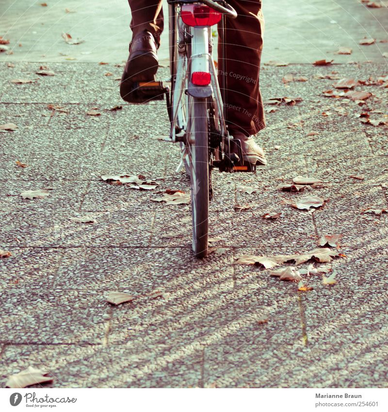 Human being Man Red Leaf Autumn Gray Movement Park Brown Footwear Bicycle Concrete In pairs Driving Sidewalk Pants