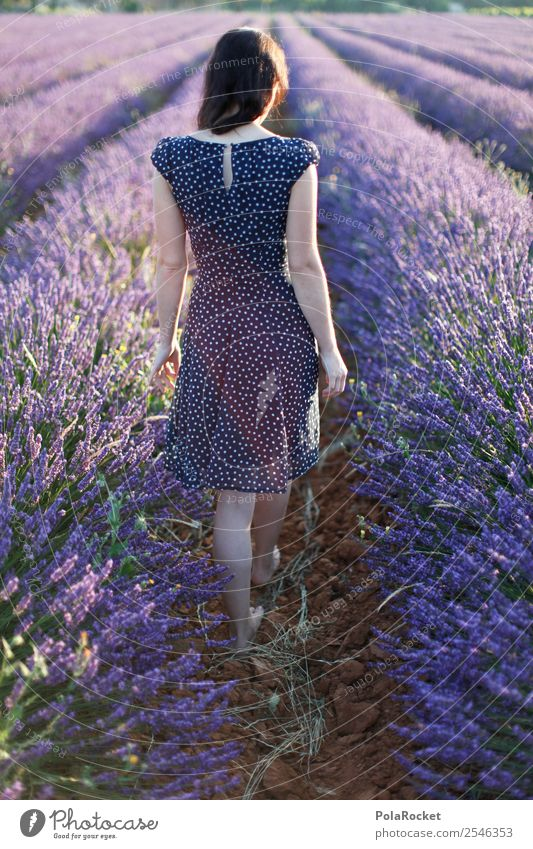 #A# walking away Environment Nature Esthetic France Provence Violet Lavender Lavender field Lavande harvest Dress Girl Woman Idyll Girlish Delicate Discover
