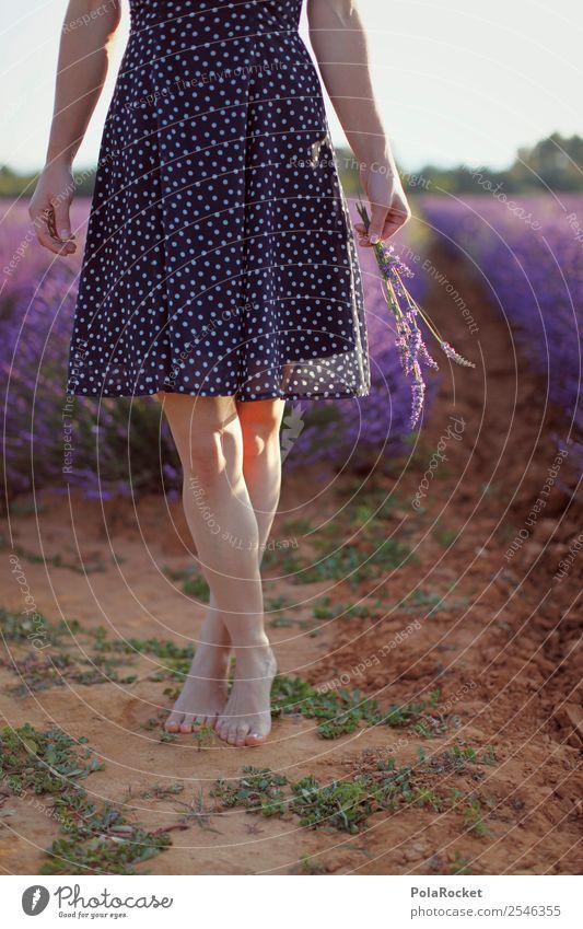 #A# Lightness Art Esthetic Contentment Barefoot Ease Violet Lavender Lavender field Lavande harvest Dress Provence France Legs Exterior shot Pick Colour photo
