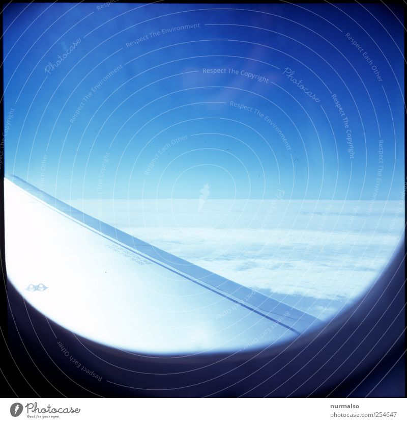 Sky Vacation & Travel Summer Joy Clouds Landscape Above Moody Art Leisure and hobbies Horizon Flying Tourism Aviation Climate Lifestyle