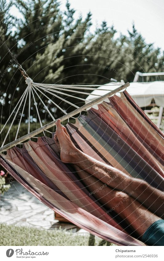 Man legs on the hammock Summer Water Young man Travel photography Legs Happy To enjoy Enthusiasm Breathe Easy Vertical Hammock Hipster Resting