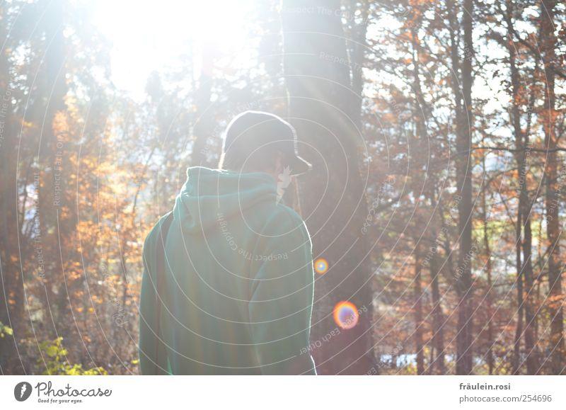 through the forest Masculine Back Nature Autumn Forest Cap Walking Colour photo Exterior shot Sunlight Sunbeam