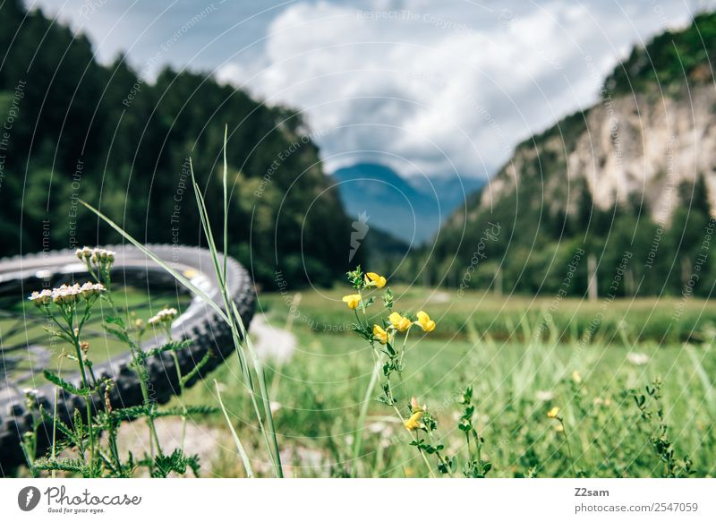 Transalp, Inn valley Leisure and hobbies Vacation & Travel Cycling tour Summer vacation Mountain Sports Nature Landscape Beautiful weather Grass Alps Natural