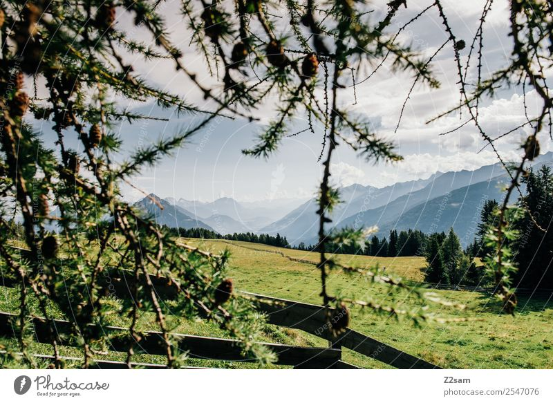 Direction Inntal Vacation & Travel Tourism Trip Summer Summer vacation Hiking Nature Landscape Sky Sun Beautiful weather Meadow Alps Mountain Esthetic Gigantic