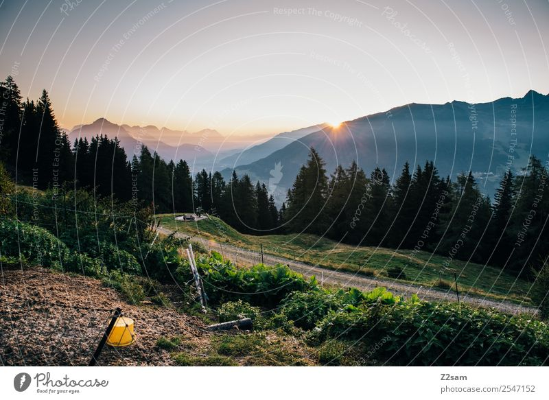Sunrise in the Pitztal valley Vacation & Travel Trip Summer vacation Mountain Hiking Nature Landscape Sunset Beautiful weather Alps Gigantic Natural Moody