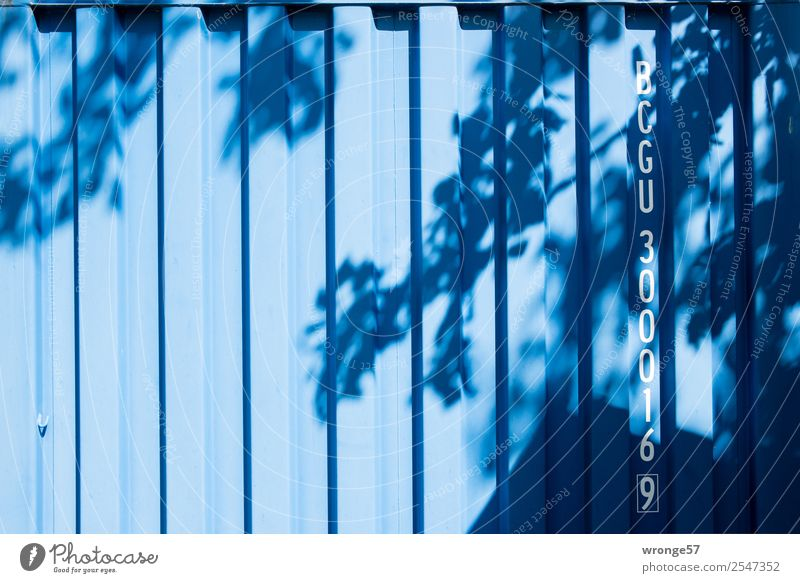 leaf container Container Tree Steel Characters Digits and numbers Blue Shadow Shadow play Branch Leaf Leaf canopy Visual spectacle Letters (alphabet)