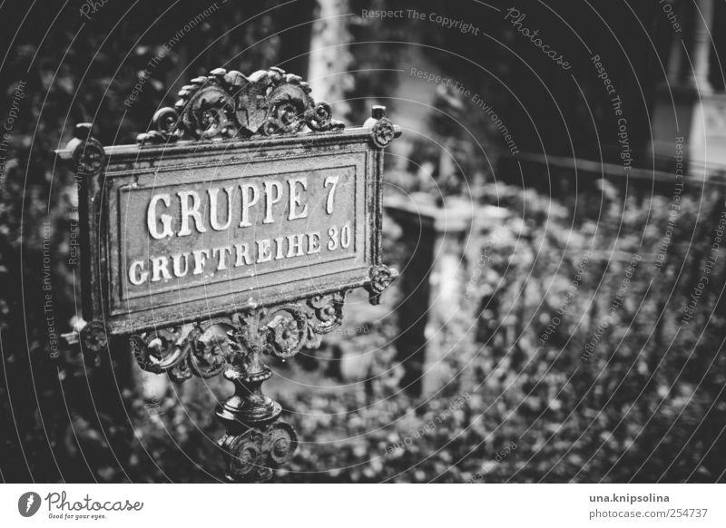 de profundis Environment Bad weather Rain Bushes Ivy Park Vienna Metal Characters Ornament Signs and labeling Signage Warning sign Dark Death Calm Grief