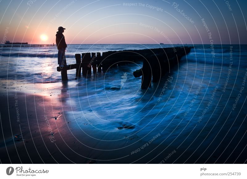 sunday Human being Masculine 1 Horizon Sun Sunrise Sunset Summer Waves Coast North Sea Ocean Navigation Container ship Cap Looking Stand Exceptional Blue