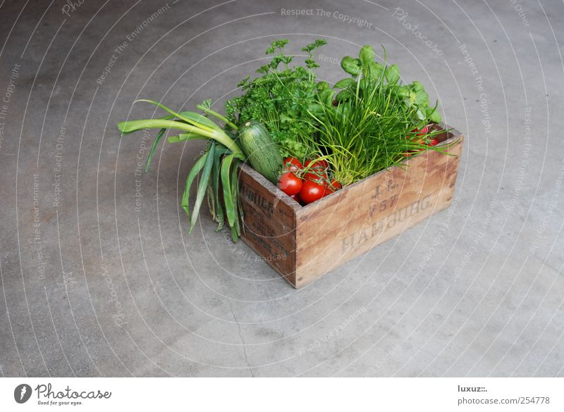 Fresh Food Vegetable Herbs and spices Healthy Sustainability vegetable box conscious Nutrition regionally Organic produce Ecological Slow food Services Farmer