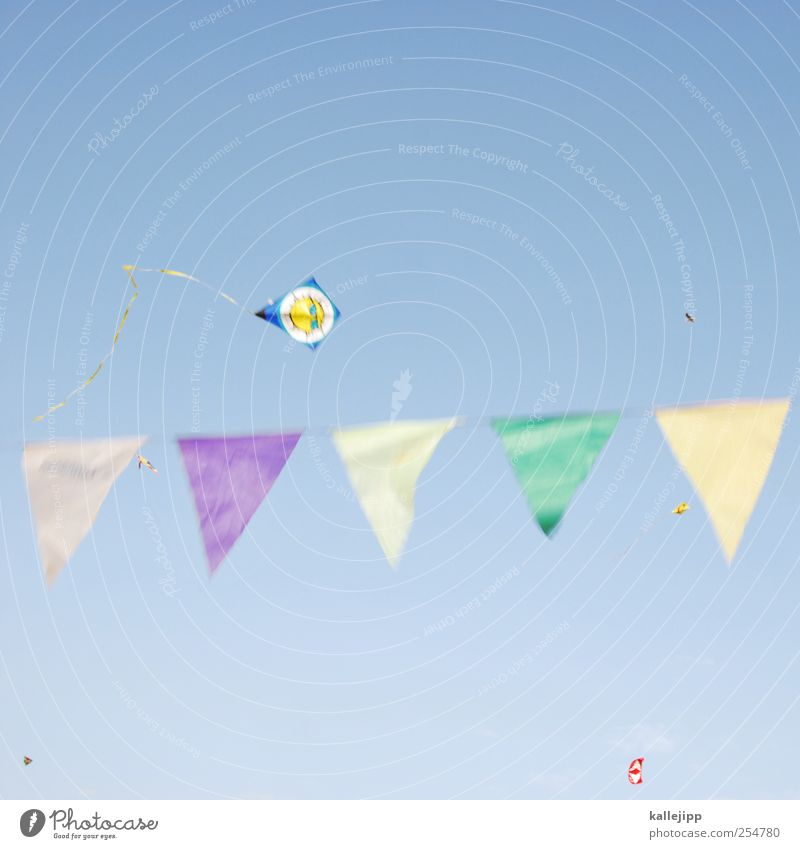 Sky Nature Joy Autumn Playing Weather Leisure and hobbies Wind Flying Lifestyle Flag Toys Beautiful weather Dragon Kite Cloudless sky