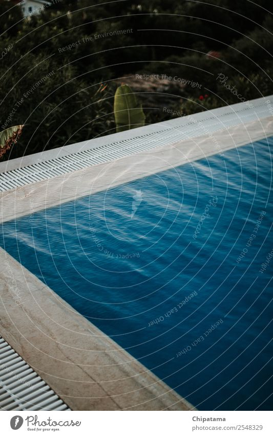 Pool edge on the sunset Style Art Breathe Swimming & Bathing To enjoy Vacation & Travel Esthetic Success Beautiful Blue Joy Happiness Safety (feeling of)