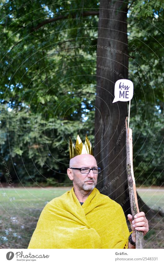 Man sits in the park in a king's costume Playing Dress up Masculine Adults 1 Human being 30 - 45 years Landscape tree Park Meadow Crown Signs and labeling Sit