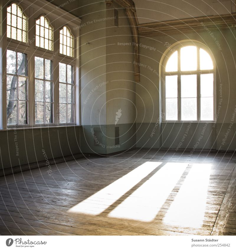 free space. Living or residing Generous Loft Free space Hall Wooden floor Floorboards Window Visual spectacle Flare Old building ballroom Colour photo