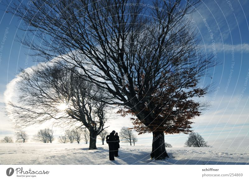 Human being Sky Nature Vacation & Travel Tree Plant Sun Joy Winter Landscape Cold Snow Happy Friendship Ice Exceptional