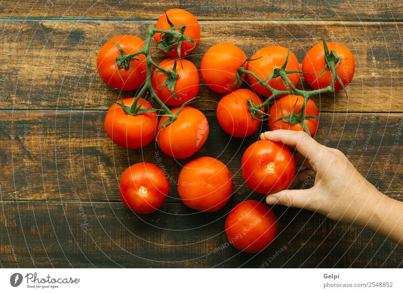 Tomatoes Vegetable Fruit Vegetarian diet Diet Beautiful Kitchen Woman Adults Hand Nature Plant Leaf Wood Select Dark Fresh Wet Natural Green Red White Colour