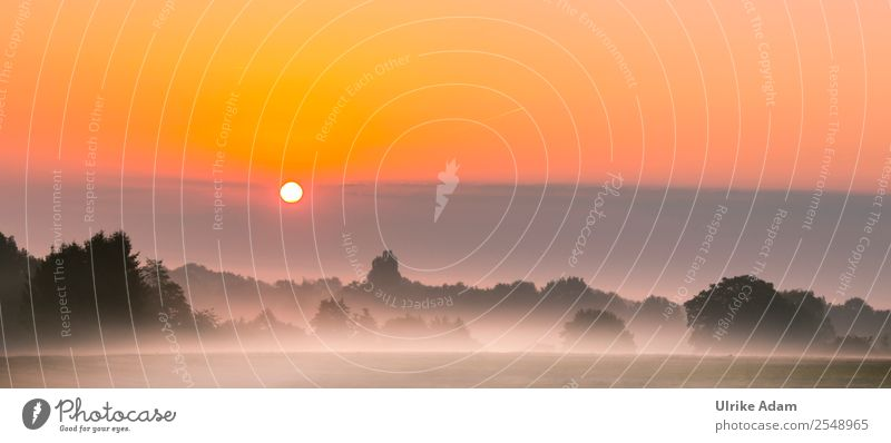 Mystic sunrise in the Devil's Moor Nature Landscape Sky Autumn Beautiful weather Fog Field Bog Worpswede devil's mire Germany Positive Orange Romance Calm Moody