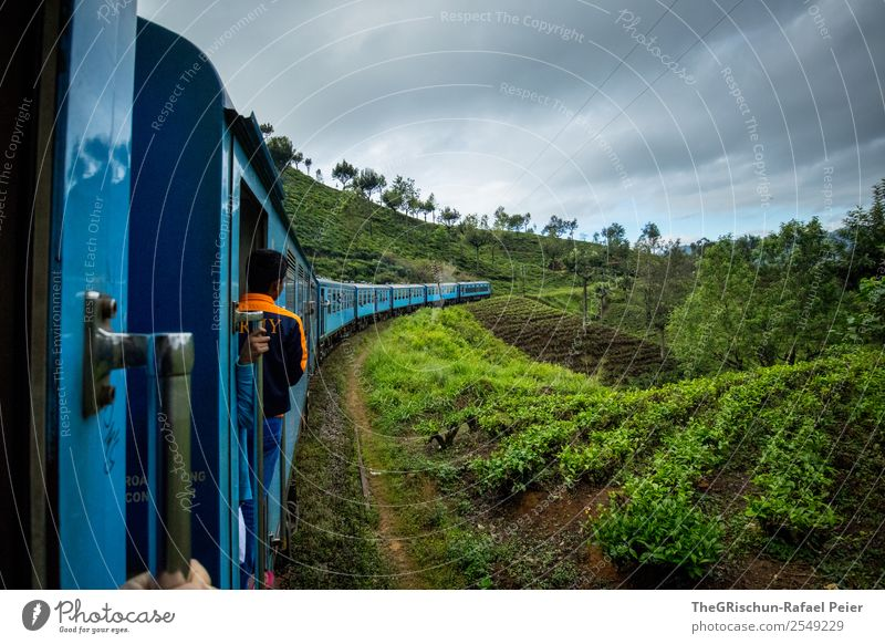 train ride Nature Landscape Blue Green Orange Sri Lanka Tea Plantation Field Vantage point Tree Idyll Railroad Logistics Train travel Colour photo Exterior shot