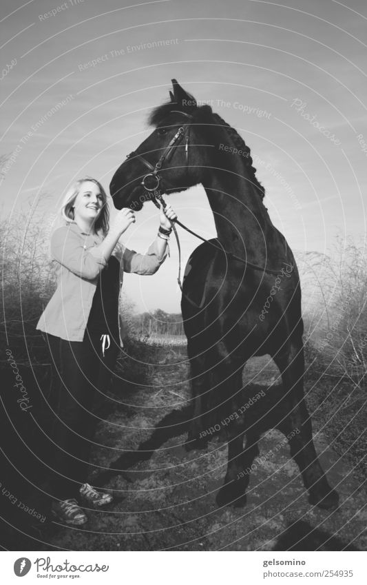 Human being Youth (Young adults) Beautiful Feminine Life Field Power Together Elegant Large Esthetic Stand Horse To hold on Observe Curiosity