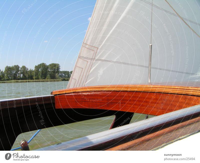 sail Summer Sailboat Sailing Watercraft Europe Sun & Wind