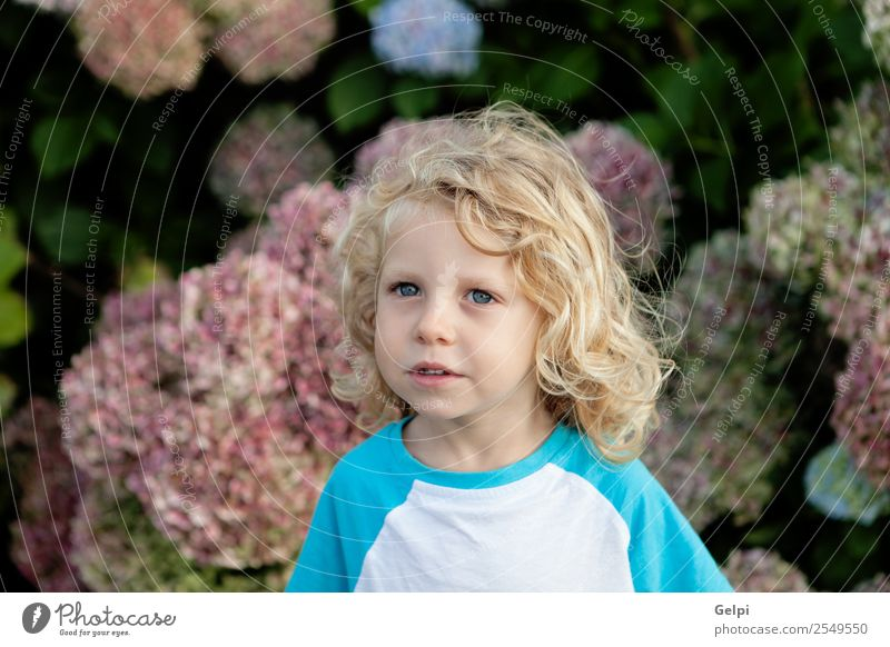 blond child Happy Beautiful Face Summer Garden Child Human being Baby Boy (child) Man Adults Infancy Hand Environment Nature Plant Flower Blonde Smiling Small