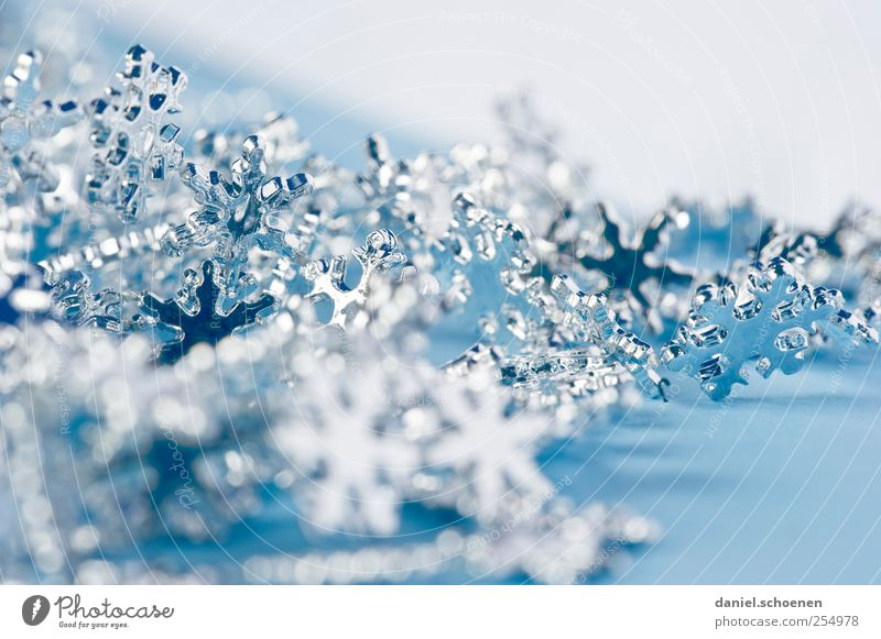 Christmas card - indoor Living or residing Decoration Christmas & Advent Crystal Bright Blue Snow crystal Stars Silver Studio shot Detail