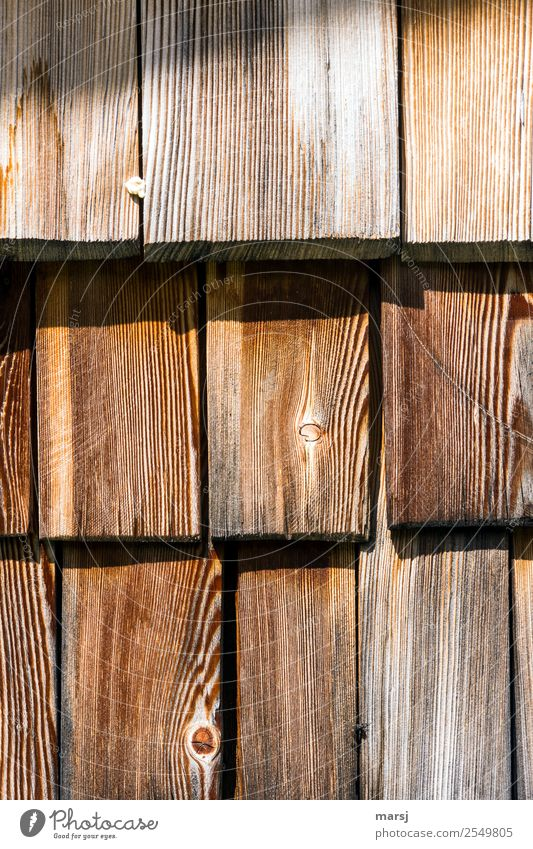 Who was that? Facade Shingle hut wall Wood Sharp-edged Together Uniqueness Sustainability Brown Unwavering Attachment Chewing gum Dirty Stick larch wood Larch