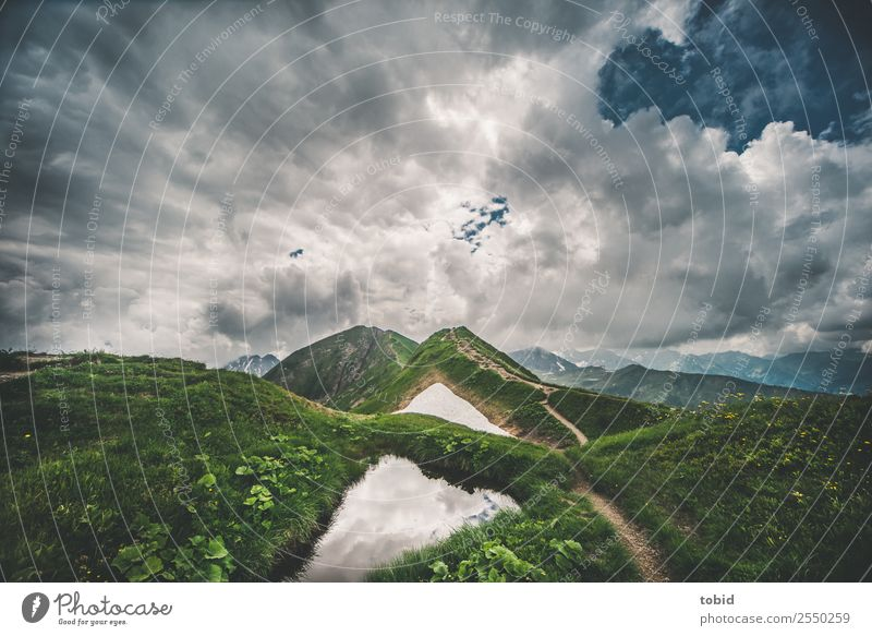 mountain top Nature Landscape Plant Sky Clouds Horizon Weather Snow Grass Bushes Moss Meadow Rock Alps Mountain Peak Lanes & trails Exceptional Threat Free