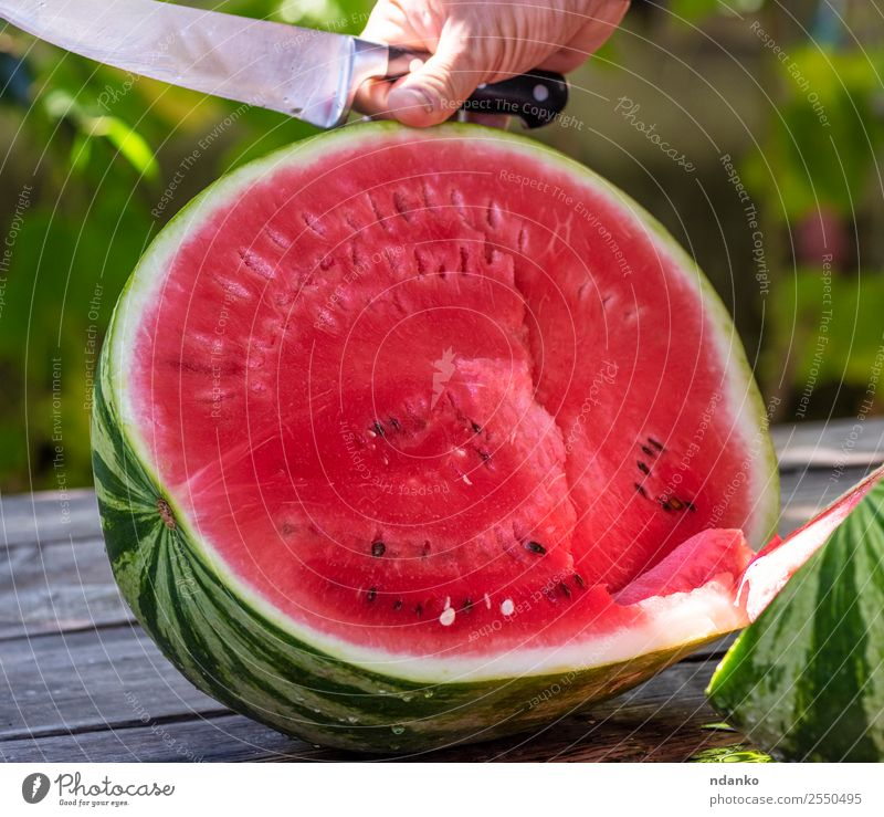 ripe large watermelon Fruit Nutrition Vegetarian diet Diet Summer Hand Nature Fresh Delicious Natural Juicy Green Red Colour Water melon knife Berries Cut eat