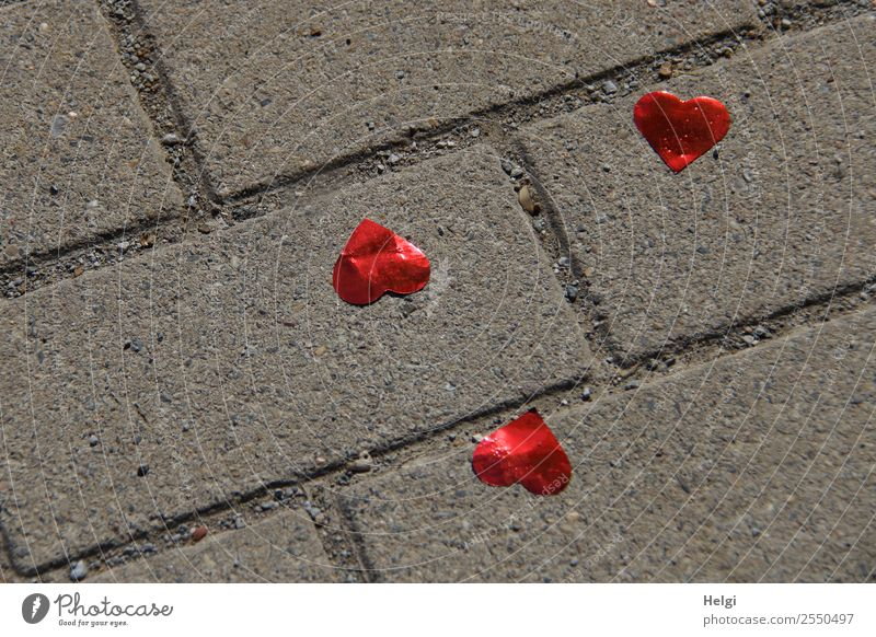 lost hearts Feasts & Celebrations Wedding Footpath Paving stone Plastic Heart Lie Exceptional Together Happy Kitsch Small Gray Red Emotions Love Romance