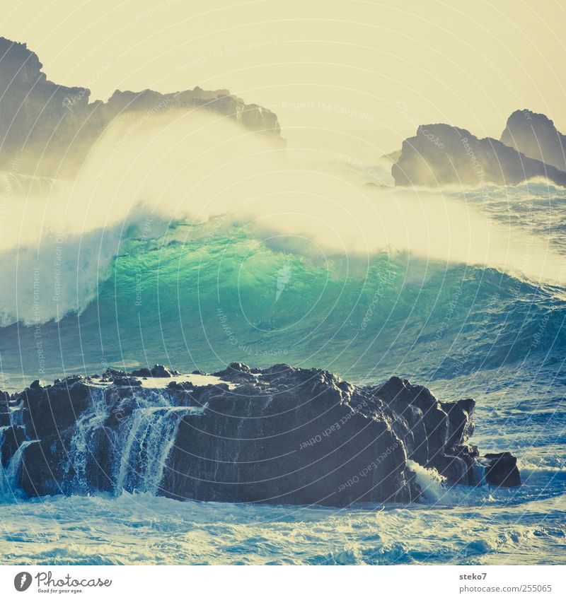 splash I Water Wind Gale Waves Coast Ocean Blue Yellow Green Retro Colours Surf White crest Cliff Subdued colour Exterior shot Deserted Copy Space top Day
