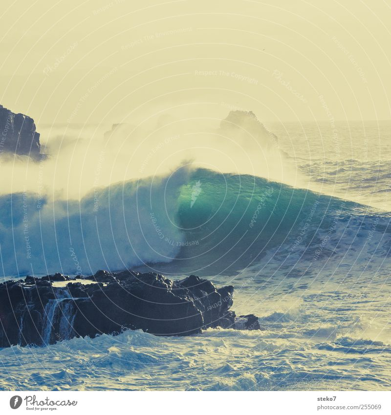 Splash III Water Wind Waves Coast Ocean Blue Yellow Green Surf White crest Cliff Subdued colour Exterior shot Deserted Copy Space top
