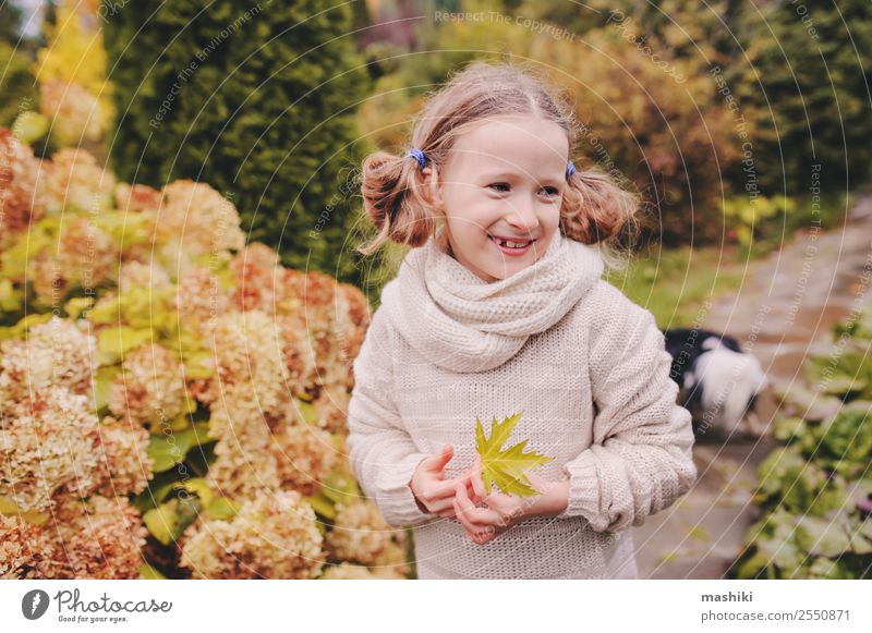 kid girl walking in the garden in late october or november Lifestyle Joy Vacation & Travel Garden Child Nature Autumn Flower Leaf Smiling Funny Natural Gardener