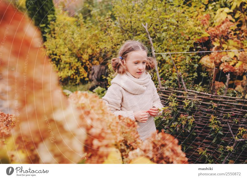 kid girl walking in the garden in late october or november Lifestyle Joy Vacation & Travel Garden Child Nature Autumn Warmth Flower Leaf Sweater Scarf Smiling