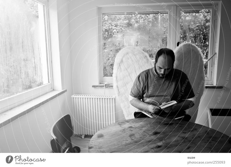 angels Reading Table Room Education Human being Masculine Man Adults 1 30 - 45 years Book Window Wing Glass Angel Sit Sadness Exceptional Grief Loneliness