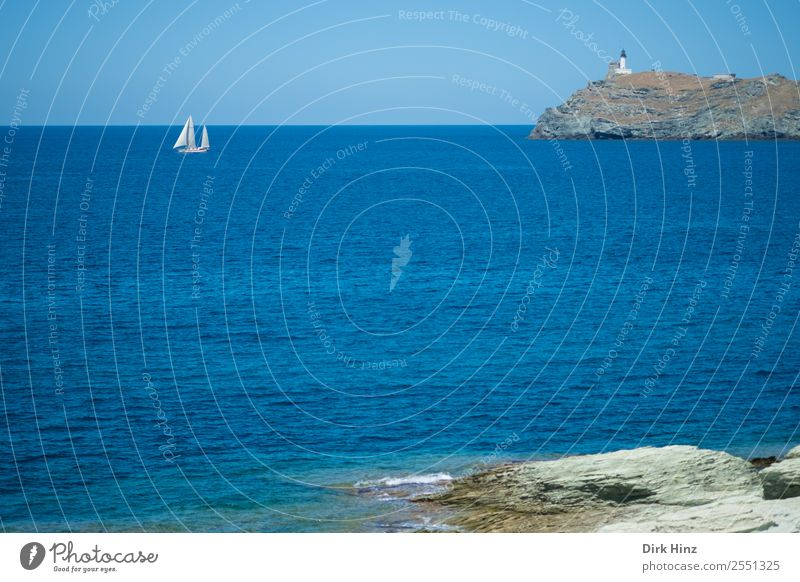 Sailors at Cap Corse / Corsica Vacation & Travel Tourism Trip Far-off places Freedom Summer Summer vacation Ocean Island Waves Environment Nature Landscape