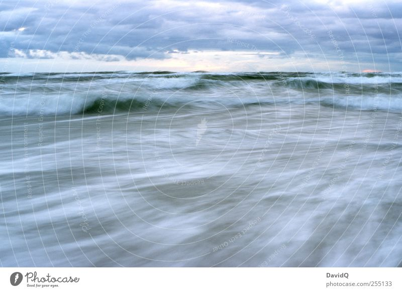 Stiff breeze Environment Nature Landscape Water Sky Climate Weather Bad weather Storm Wind Gale Waves Coast Beach Baltic Sea Movement Power Long exposure