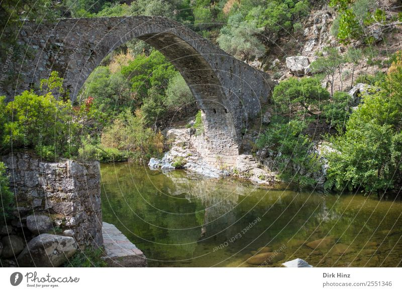 Old bridge over Corsican river Lonca Vacation & Travel Tourism Trip Far-off places Nature Landscape Plant Water Wild plant Rock Mountain Canyon Ruin Bridge