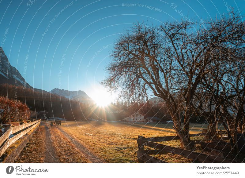 December afternoon in an Austrian village Vacation & Travel Mountain Nature Landscape Alps Ehrwald Village Tourist Attraction Gold Afternoon Blue sky bright sun