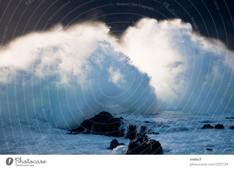 ocean spray Water Gale Waves Coast Ocean Blue Gray Black White Surf White crest Foam Water fountain Excitement Subdued colour Exterior shot Deserted
