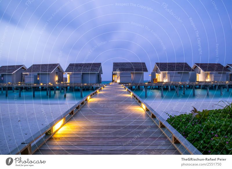 Vacation & Travel Nature Blue Green Ocean House (Residential Structure) Beach Yellow Moody Violet Footbridge Paradise Maldives