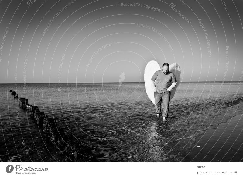angels Freedom Beach Ocean Human being Masculine Man Adults 1 30 - 45 years Environment Nature Elements Water Horizon Coast Baltic Sea Wing Angel Exceptional