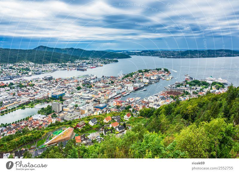 View to the city Bergen in Norway Relaxation Vacation & Travel Tourism Ocean Mountain House (Residential Structure) Nature Landscape Water Tree Forest Hill Town